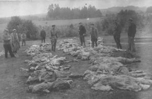 1941 metais gretimame Rašės miške nužudyti beveik visi 5 tūkst. Utenos žydų
